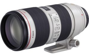 best type of canon lenses sports lens